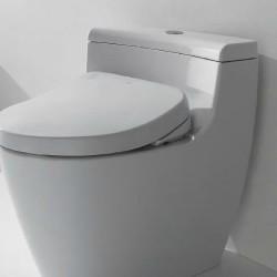 Toilet_Lavatories